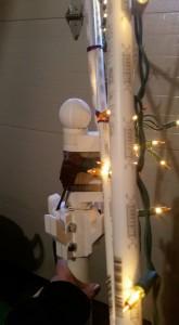 Flagpole Tree - 02